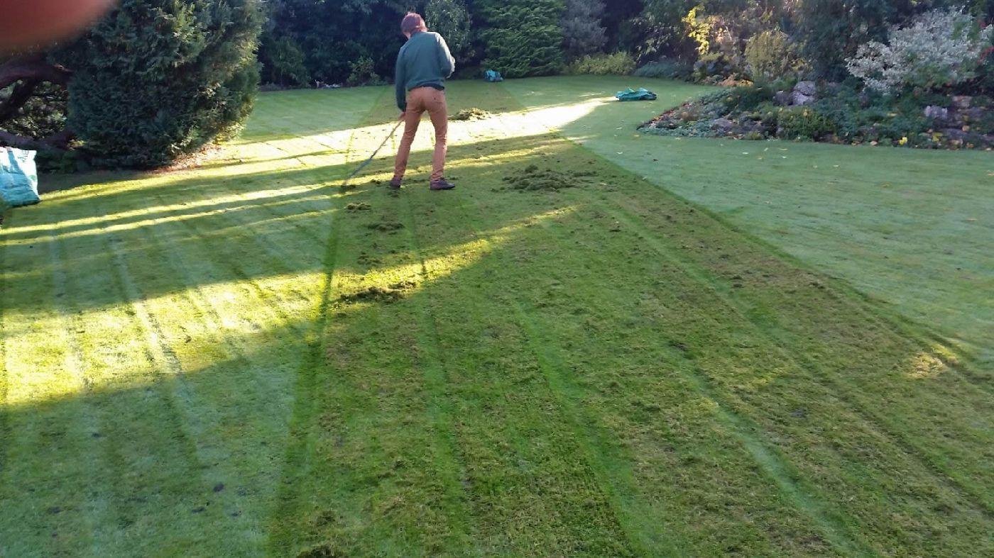 lawn moss removal machine